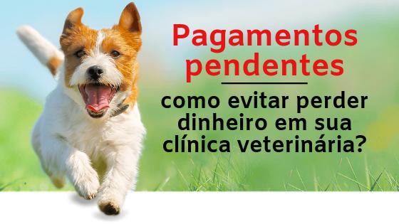 Pagamentos pendentes como evitar perder dinheiro em sua clínica veterinária?