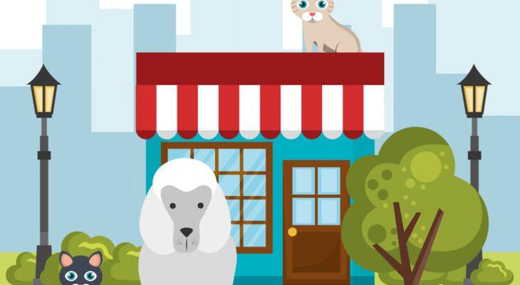 Pet shop: Como montar uma casa de ração?