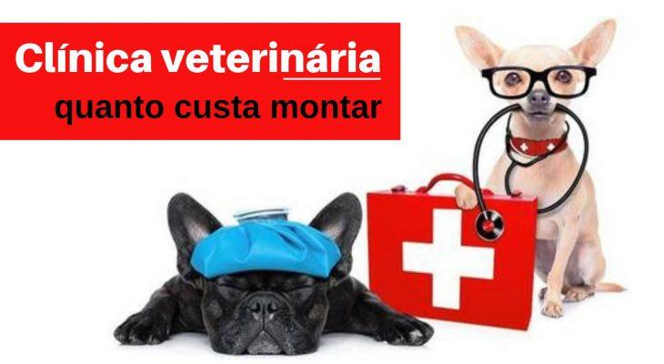 Qual preço para montar uma Clínica veterinária?
