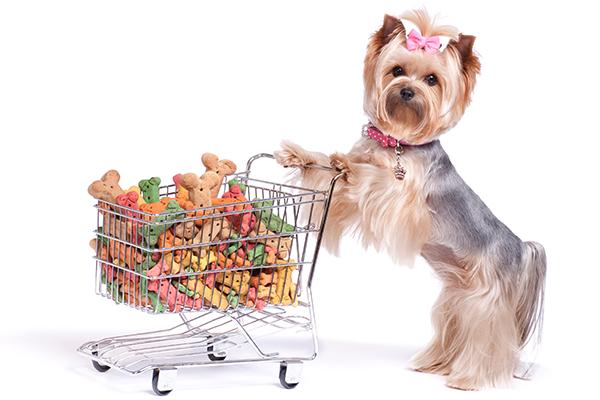 Como e porque descobrir o perfil dos clientes de seu Pet Shop